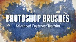 Photoshop Brushes Advanced Features: Transfer